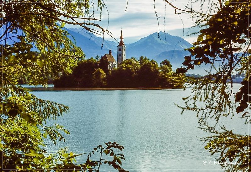 Austria+Jugoslawien_1980_24.jpg