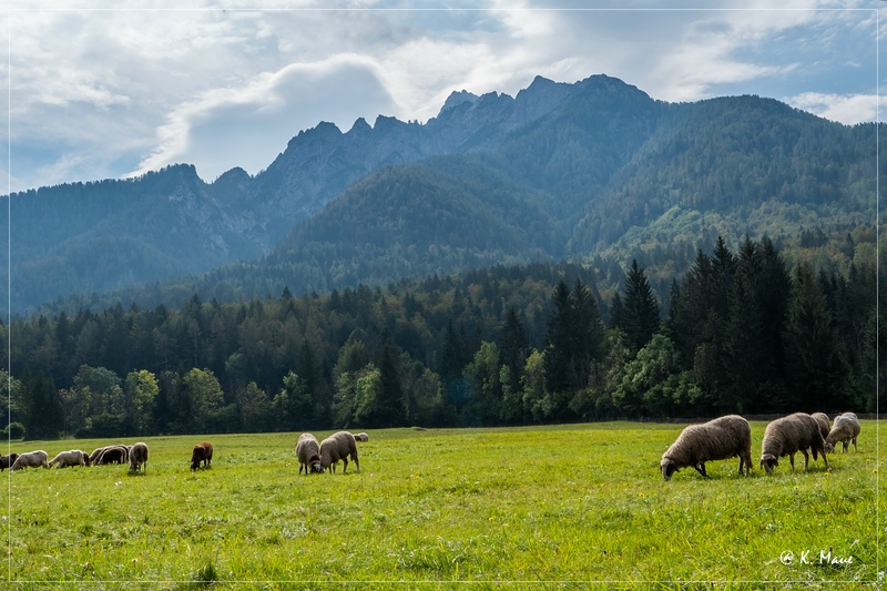 Alpen_2020_112.jpg