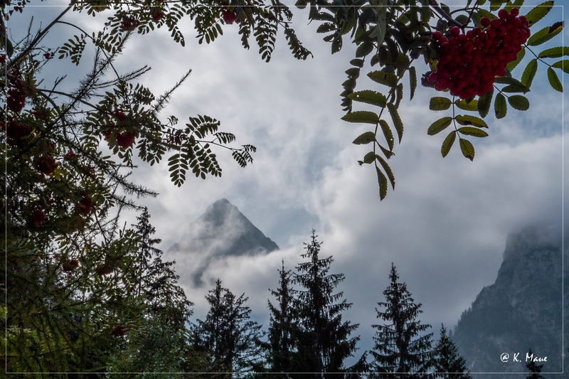 Alpen_2020_142.jpg