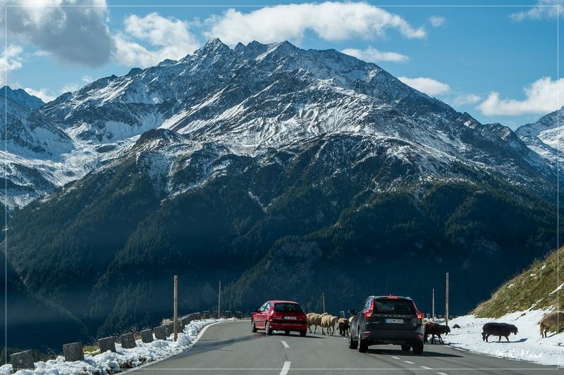 Alpen_2020_598.jpg