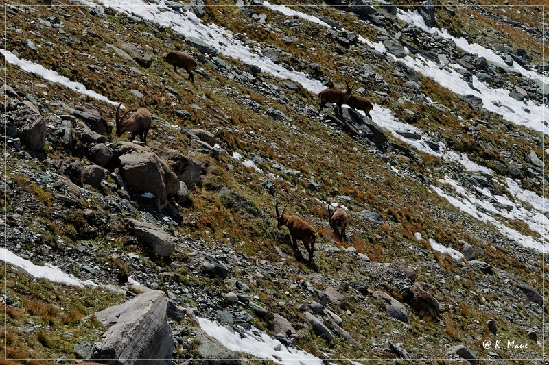Alpen_2020_611.jpg